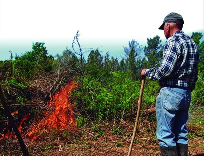 GNR vai mostrar como fazer queimadas